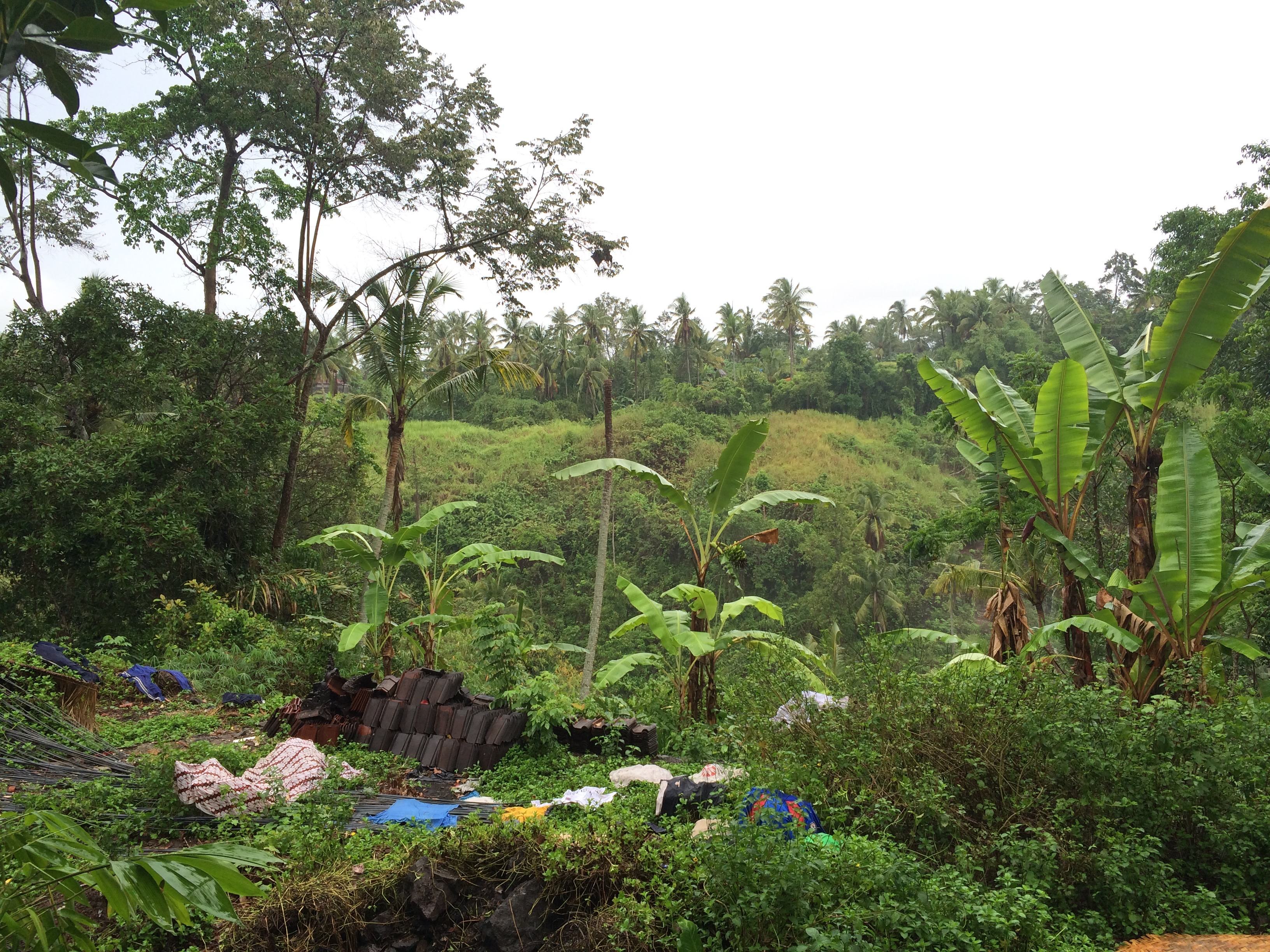 View from the Open Air Kitchen at Paon Bali Cooking Class