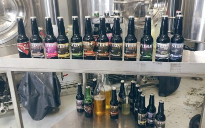 Selection of Stedji Icelandic Craft Beer Including Their Famous Whale Testical Beer