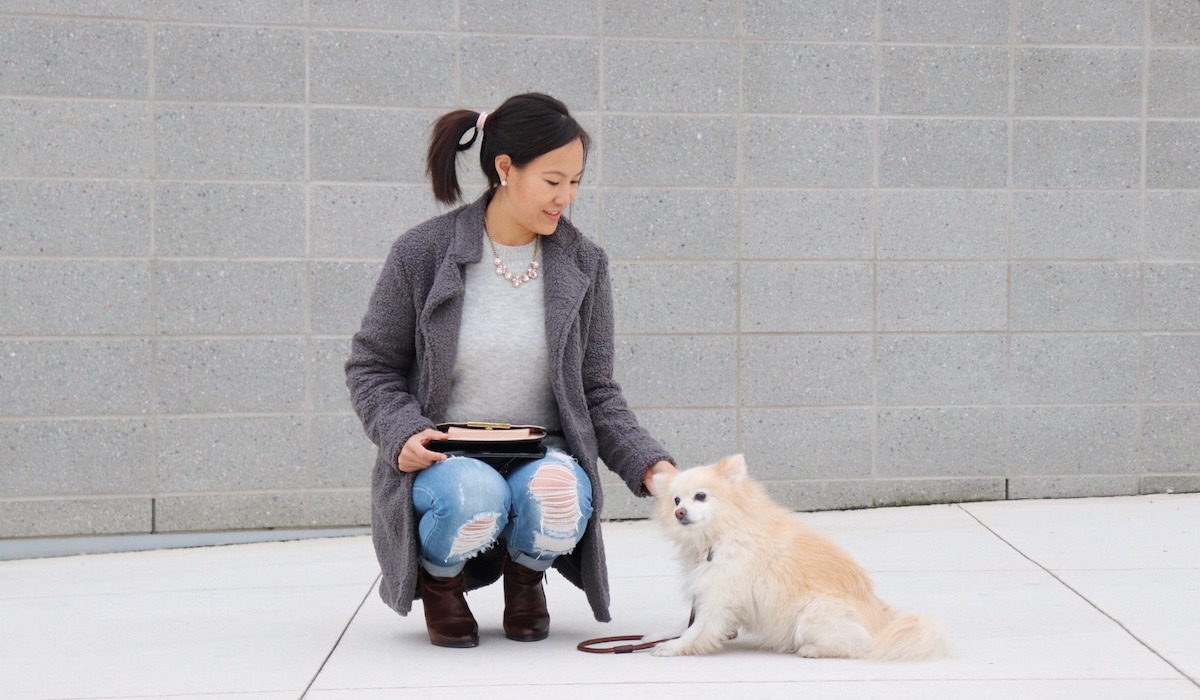 Tips on Finding the Right Caretaker For Your Dog While You Travel