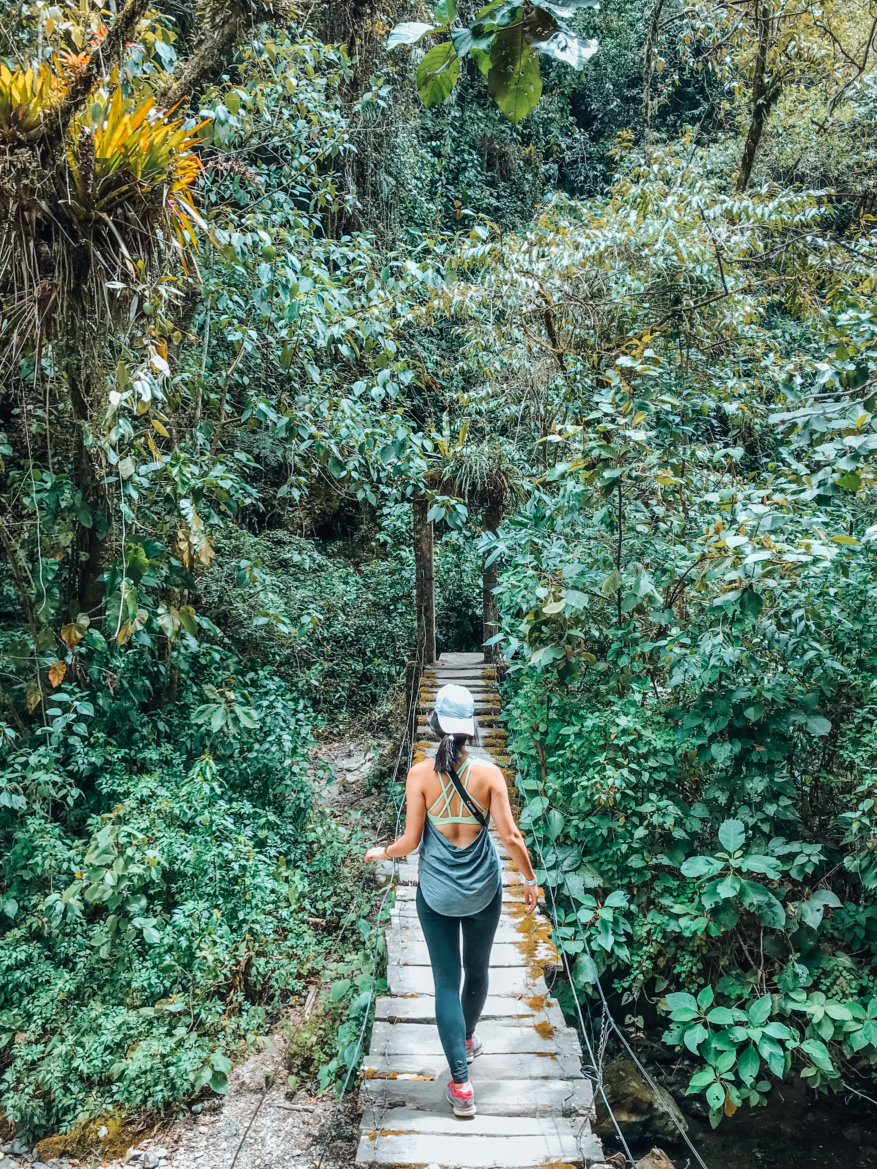 Cocora Valley Hike