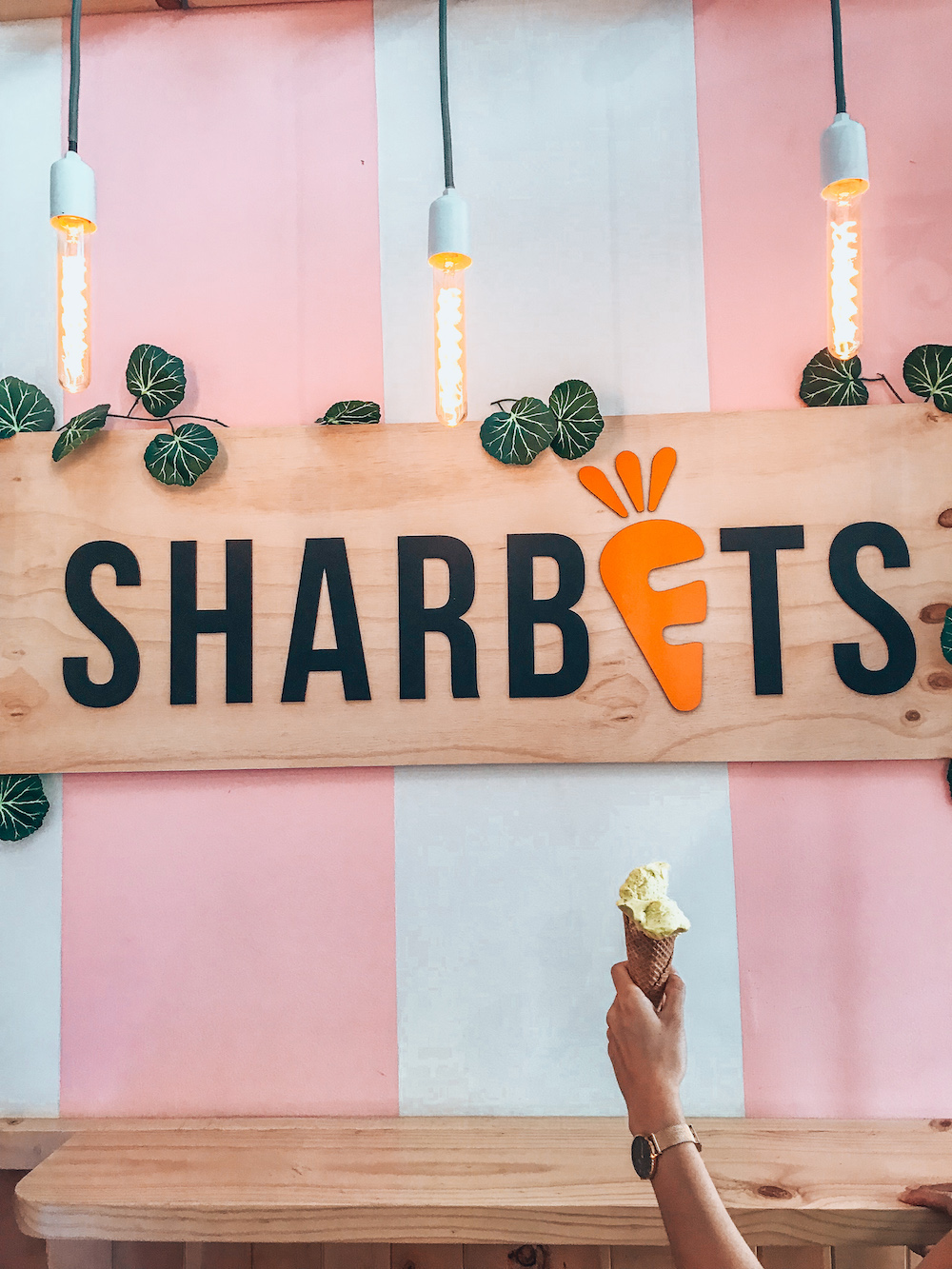 Sharbets Ice Cream in Poblado in Medellin