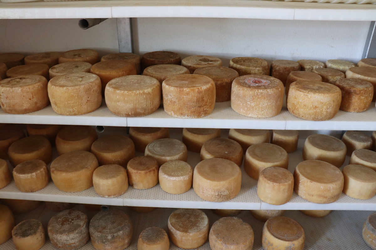 Naxos Cheese