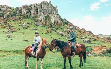 New Zealand Stone Hill Horse Trek
